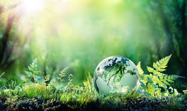 Nachhaltigkeit ist Dir wichtig? Dann bist Du bei uns richtig!